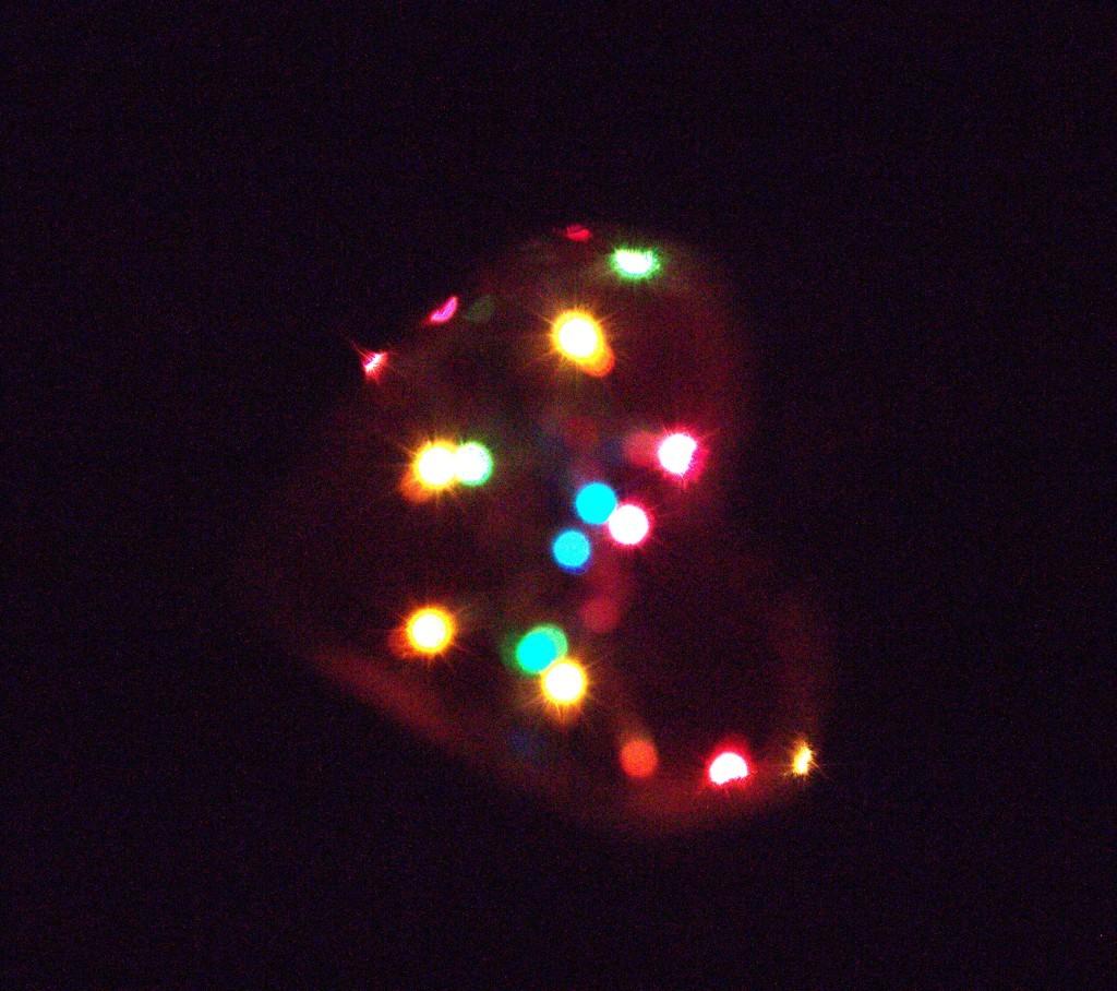 Bokeh Lights In Heart