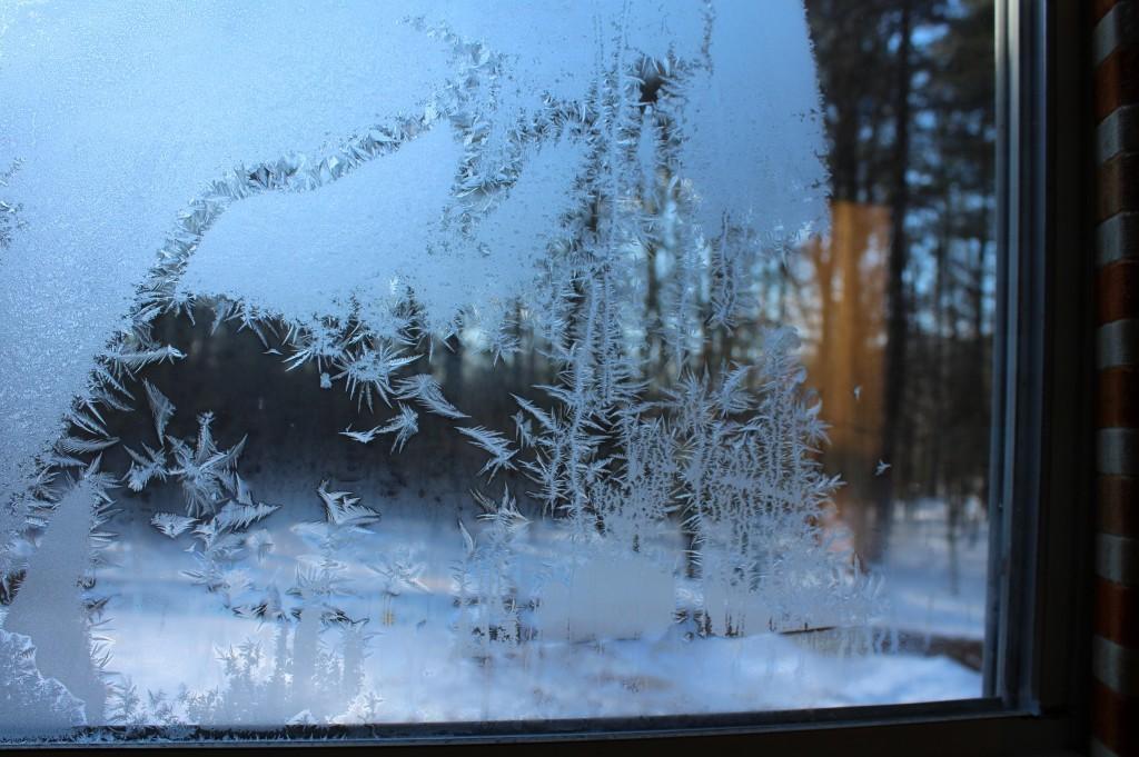 Frosty Window On A Frigid Morning