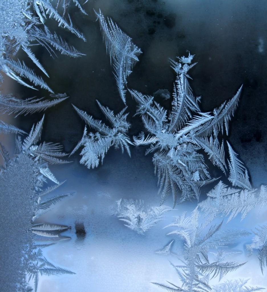 Frosty Window Feathers